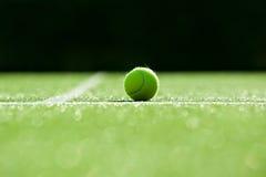 Foco seletivo bola de tênis na corte de grama do tênis boa para a parte traseira Fotografia de Stock