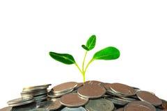 Foco seletivo das moedas sobre o euro- fundo da cédula , conceito do dinheiro Fotos de Stock
