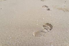 Foco seletivo na pegada grande na areia como o engodo da viagem da vida fotos de stock royalty free