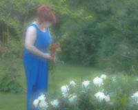 Foco suave del jardinero Imagen de archivo libre de regalías