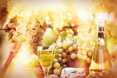 Foco suave en las uvas y el vino Imágenes de archivo libres de regalías