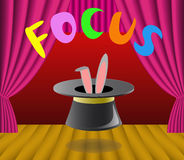 Focus. Rabbit in the hat is shown in the image Stock Photo
