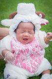 Focus at Asian newborn baby girl with costumes little sheep in the garden and mother is holding her. Stock Images