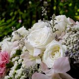Focus beautiful white roses bouquet Stock Photography