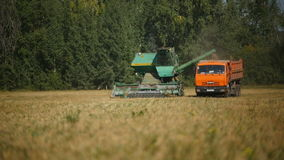 Focus changes and shows combine loading harvest into tipper stock footage