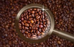 Focus on coffee beans Royalty Free Stock Photo