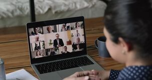 Diverse business people involved in video call online meeting.