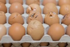 Focus on the cracked egg in the eggs tray.  Stock Photography