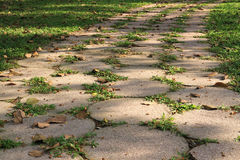 Focus footpath in the garden. Detail of footpath in the garden Stock Photography