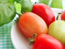 Focus on healthy vegetables Royalty Free Stock Photography