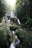 Focus image green forest . beautiful tropical waterfall falling down from the mountain. Blurred and selective focus image green forest . beautiful tropical stock photo