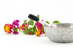 Focus on make up brush and silver bowl with lantana flowers behi Royalty Free Stock Images