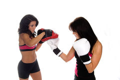 Focus Mitt Training Royalty Free Stock Images