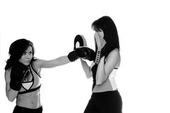Focus Mitt Training Royalty Free Stock Image