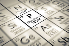 Focus on Phosphorus chemical Element. From the Mendeleev periodic table royalty free stock image