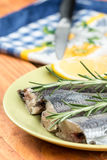 Focus on raw hake fish on the plate with rosemary and lemon.  Stock Image