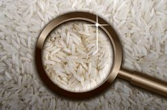 Focus on rice flakes Royalty Free Stock Photo