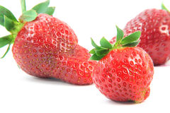 Focus on right strawberry Stock Image