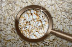 Focus on rolled oats Stock Photography