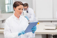 Focus scientist using tablet pc Stock Images