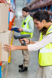 Focus of serious worker is working on cardboard boxes. In a warehouse Royalty Free Stock Images