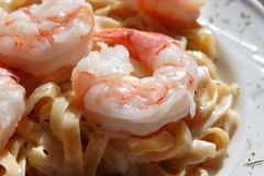 Focus on Shrimp Alfredo Stock Photography