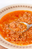 Focus on spoon with minced meat and rice Stock Images
