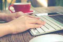 Focus on the woman hand using laptop, searching, checking, browsing information at the coffee shop, matte and noise filter apply royalty free stock images