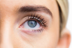 Focus on womans eye with opened eyes Royalty Free Stock Photography