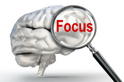 Focus word on magnifying glass and human brain Royalty Free Stock Photo