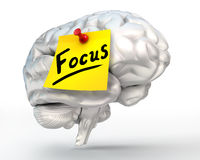 Focus word note paper on brain Royalty Free Stock Photos