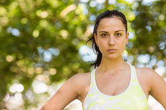 Focused athletic brunette in the park Royalty Free Stock Photo