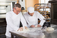 Focused bakers kneading dough at counter Royalty Free Stock Image