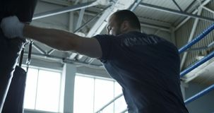 Boxer training with bag in gym. Focused bearded man punching boxing bag training techniques of martial art in gym stock footage