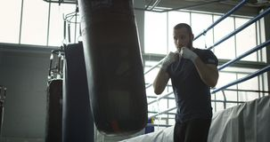 Boxer training with bag in gym. Focused bearded man punching boxing bag training techniques of martial art in gym stock video footage