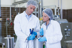 Focused biologist team working together Royalty Free Stock Images
