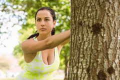 Focused brunette stretching against a tree Royalty Free Stock Photography