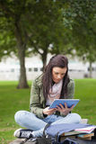 Focused brunette student using tablet sitting on bench Royalty Free Stock Photo