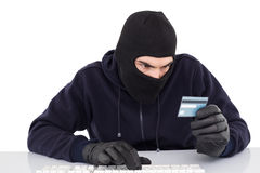 Focused burglar using computer and debit card Royalty Free Stock Image