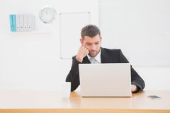 Focused businessman looking at laptop Stock Photography