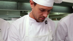 Focused chefs talking in a row Stock Images