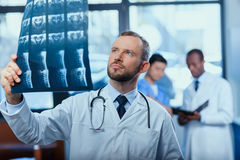 Focused doctor analyzing x-ray picture with colleagues behind Stock Photography