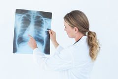 Focused doctor looking at xray Stock Photos