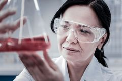 Focused female professional examining chemical liquid in lab. Monitoring the results. Selective focus of a mature brunette wearing safety glasses concentrating stock photos