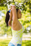 Focused fit brunette stretching in the park Stock Photography