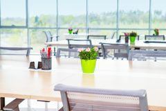 Free Focused Flower Pot And Stationery Stand On The Long Office Table In Light Interior Of Open Work Space Office With Big Windows, Des Royalty Free Stock Photos - 118616208