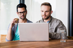 Focused gay couple using laptop Royalty Free Stock Photo