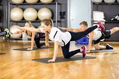 Focused group exercising core strength and balance at fitness gym Stock Image