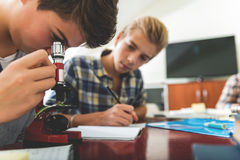 Focused male pupils at lesson Royalty Free Stock Image