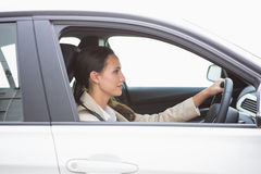 Focused pretty business woman driving Stock Photography